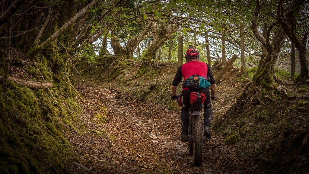 WRT, bikpeacking, Alpkit Sonder, fat bike, Alpkit,