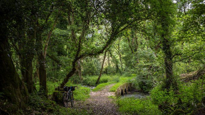 Gower, bikepacking, kinesis, bridge, adventure, Alpkit, wildcat gear, explore,